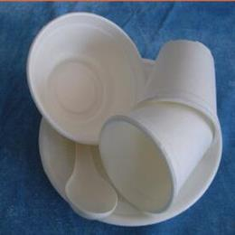 淀粉降解餐具及包装制品流水线
