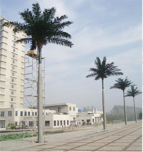 深圳新款室内外仿真大王椰树