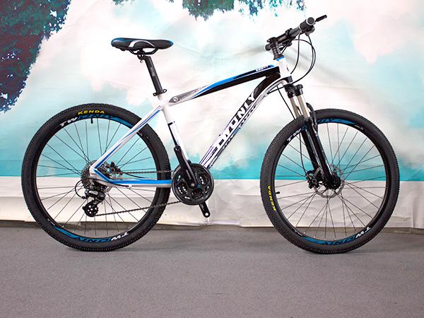 天津自行车品牌排行榜