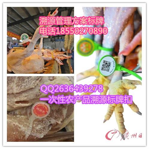 金禾通二维码鸡脚环生产厂家