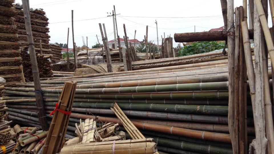 北京哪里有卖竹子批发竹竿厂家