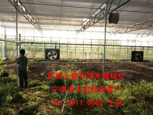 浩丰hf-3大棚加温锅炉供热蔬菜、花卉、种植大棚