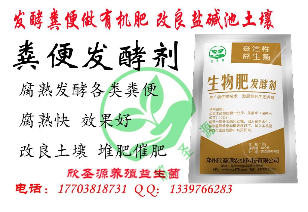 温州怎么发酵鸡粪来养蝇蛆喂鸡