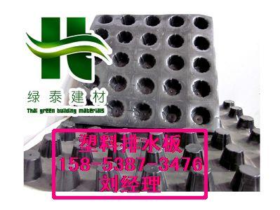 鹰潭3公分蓄水板|塑料隔根层15853873476