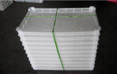 青岛塑料烘干盘,城阳塑料单冻器,黄岛塑料冷冻盘