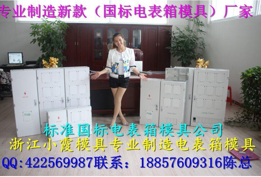 黄岩专做注射模具厂 标准新国网三相6位电表箱塑料模具