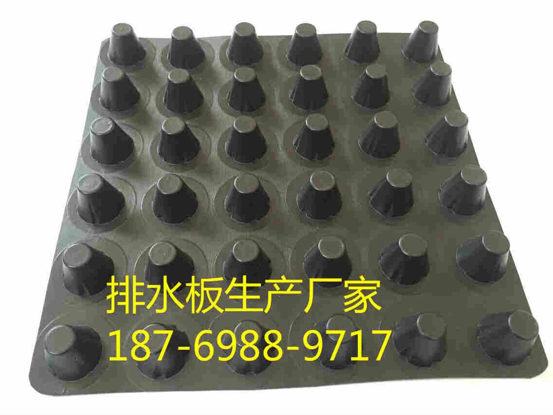 潍坊凹凸型塑料排水板厂家_欢迎您