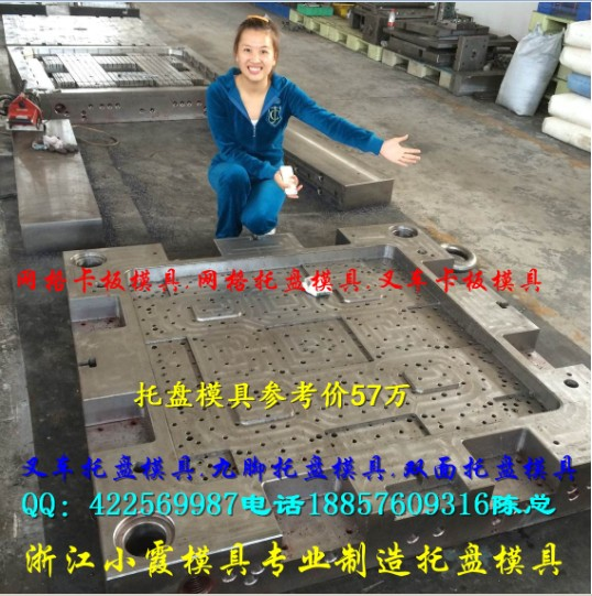 黄岩北城专做塑料双面栈板模具 塑料 塑料双层栈板模具供应商地址