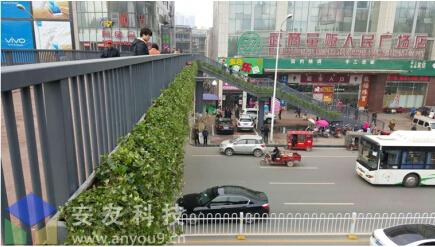 高架桥沿口绿化花箱特点介绍