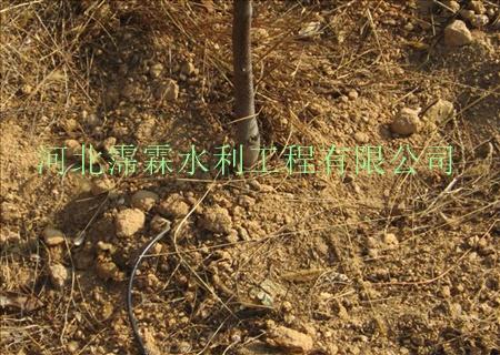 塑料稳流器规格 果树滴灌 新乡原阳县梨树滴灌