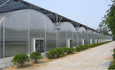 北方温室大棚设计