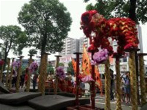 佛山传承龙狮文化(多图),华南堂醒狮开业表演,华南堂