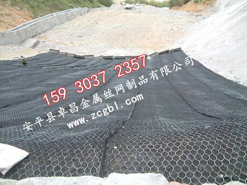 沉排坝治理宾格笼,锌铝合金铅丝笼,植被草木铅丝绿滨垫