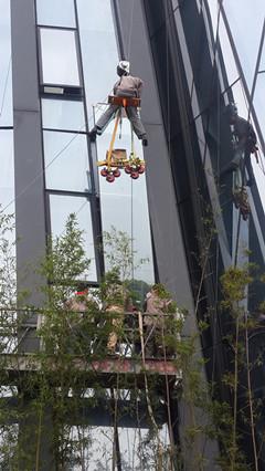 深圳广州佛山高空超长落地玻璃更换安装维修东邦幕墙好