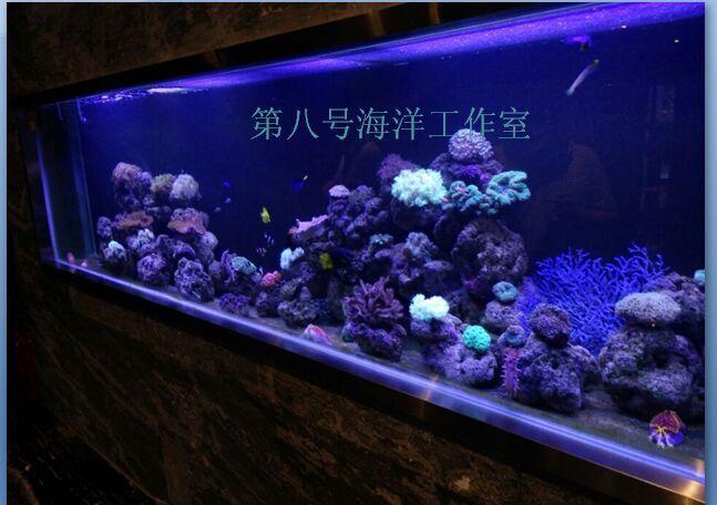 郑州其他郑州鱼缸价格哪家好