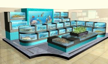 生态鱼缸哪个牌子好-京豪水族制品