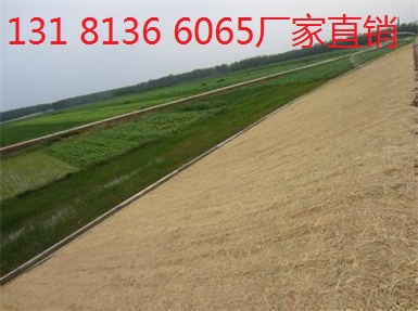 稻草植被毯 抗冲生物毯河道绿化图片 生态毯 环保草毯护坡厂家