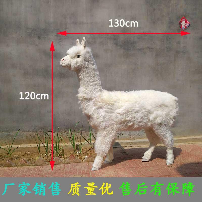 仿真羊驼模型厂家直销