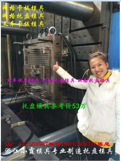 江苏界牌模具 1米3叉车插钢管仓垫板塑料模具 1米3叉车单面仓垫板塑料模具 塑料模具公司
