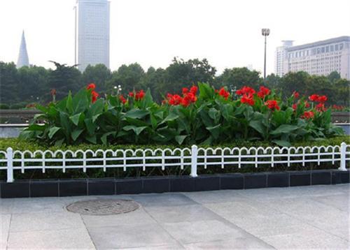 浙江省仿真花卉、绿艺轩、哪里有仿真花卉卖