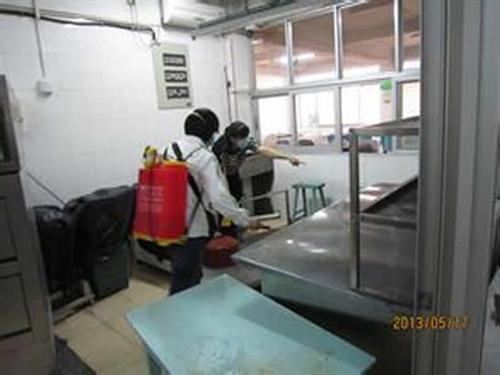 宁阳县灭苍蝇,康泰有害生物防治,办公楼灭苍蝇