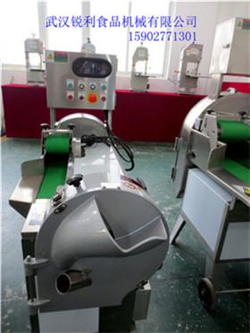 锐利RL-801多功能切菜机,双变频可调切菜机,武汉双头切菜机