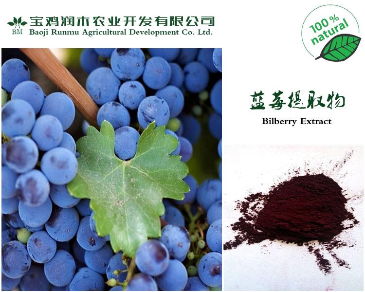 宝鸡其他植物提取物零售信誉保证蓝莓提取物花青素20%的价格