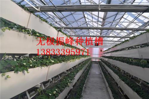 壁挂式无土栽培种植槽