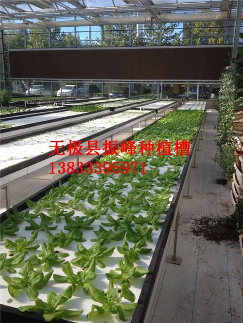 邢台草莓立体式种植槽价格