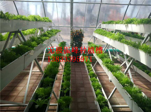 邢台大棚草莓种植槽价格