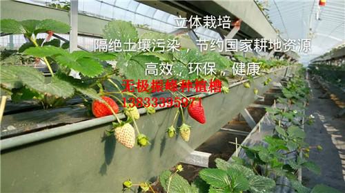 邢台基质无土栽培种植槽价格
