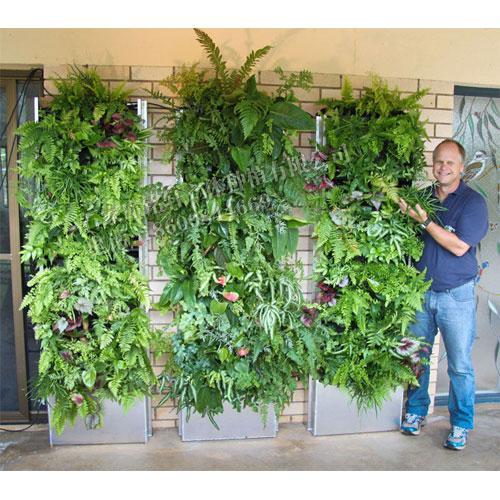 植物墙技术,植物墙,铭秀立体(查看)