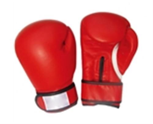 山东省拳击台、拳击台尺寸(图)、猛龙体育用品