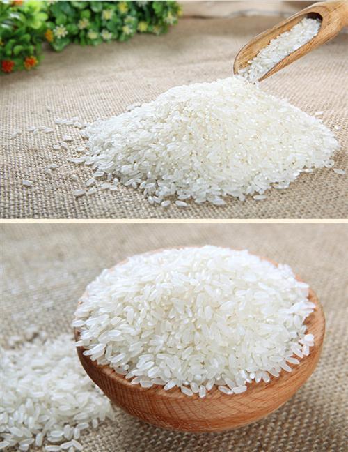 优质大米供应商、优质大米、南京完美江南(查看)