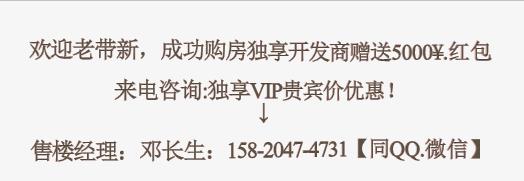 东莞嶺秀新城活动