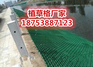 泰安旺高建材十堰塑料植草格供应厂家直销