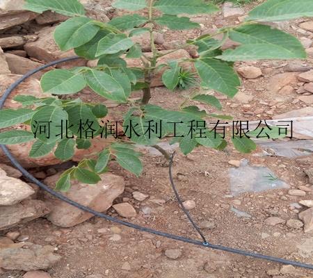 河北果树小管出流设备 小管出流产品齐全