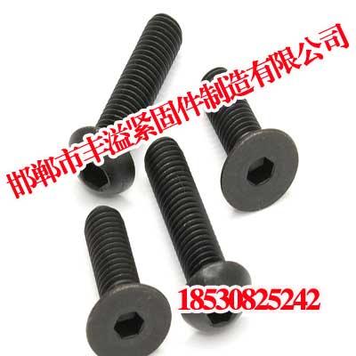 防腐螺栓,防腐螺栓生产商,丰溢紧固件