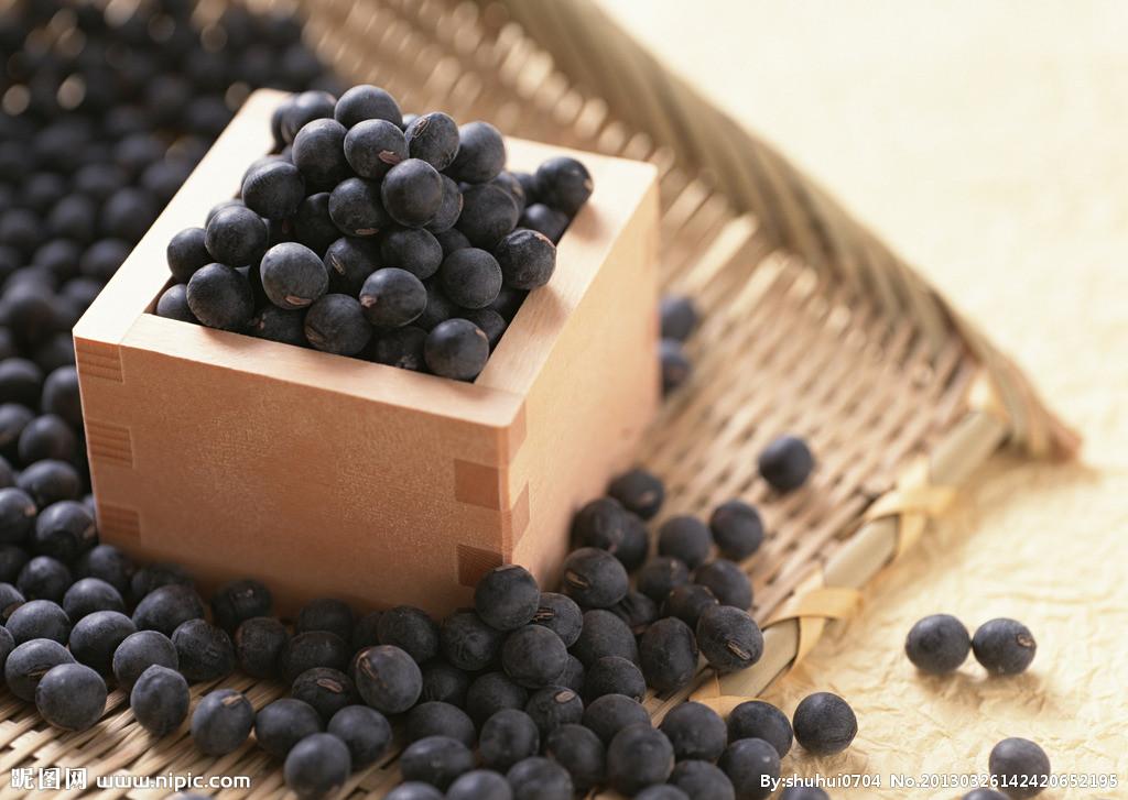 黑豆提取物功效 黑豆浓缩粉价格
