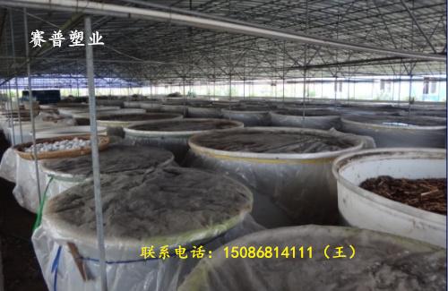 防腐咸菜桶_咸菜桶腌制发酵_1000公斤咸菜桶厂家