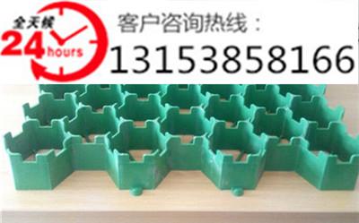 江苏植草格/塑料植草格/优质植草格