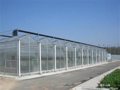 威海温室大棚 温室大棚造价 图 建发温室建设