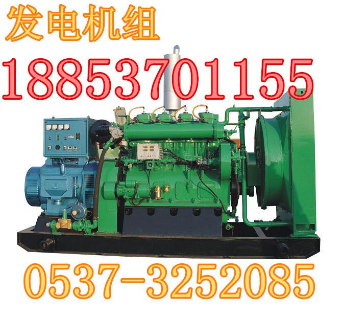 供应沼气发电机组的发电技术