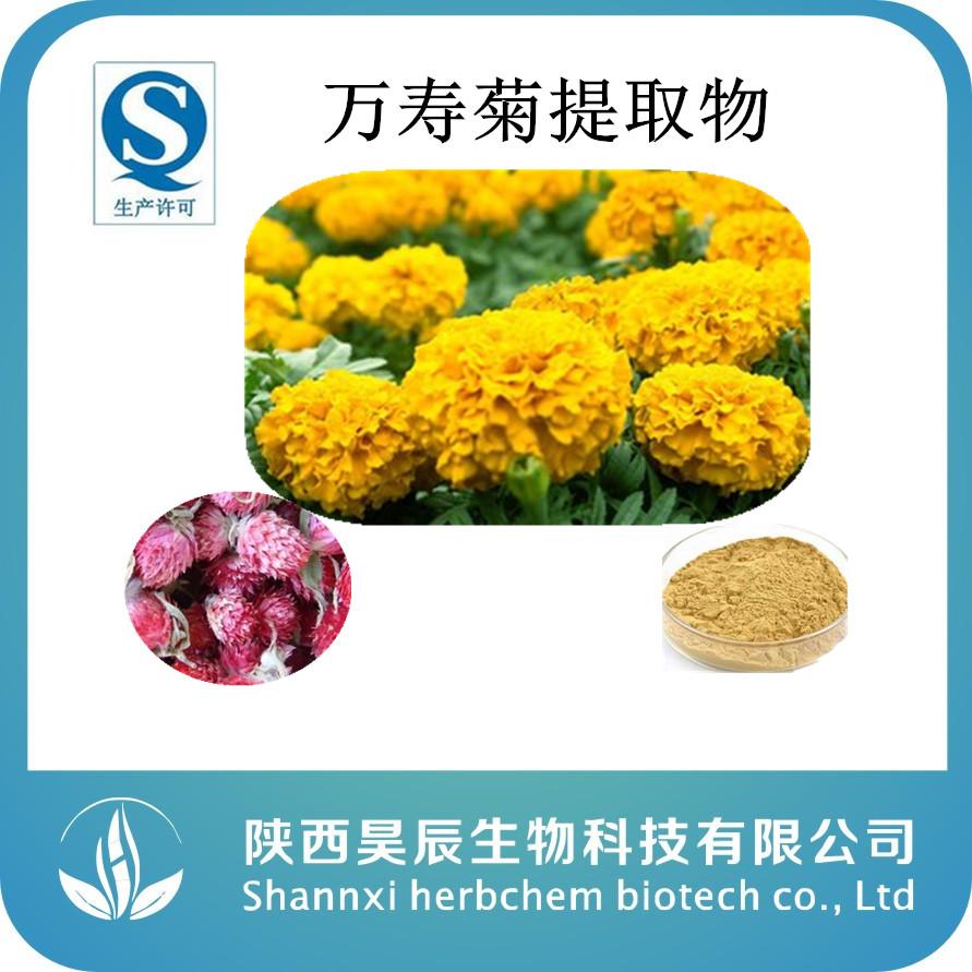 厂家现货天然万寿菊提取物 缓解视疲劳 叶黄素20%长期稳定供应中