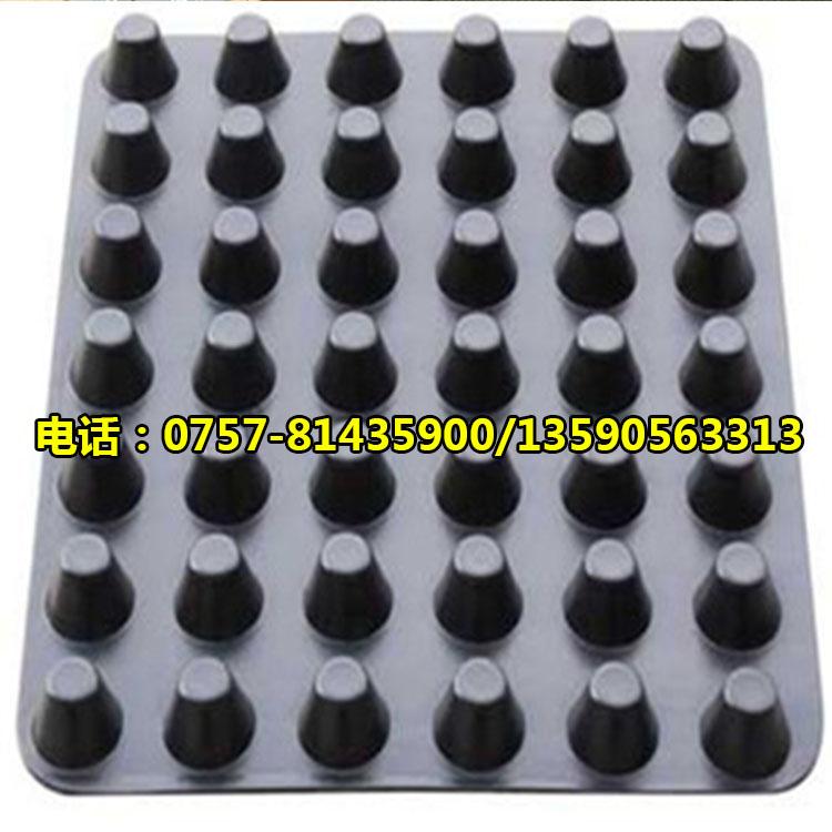 广东塑料排水板厂家 蓄水板/疏水板供应