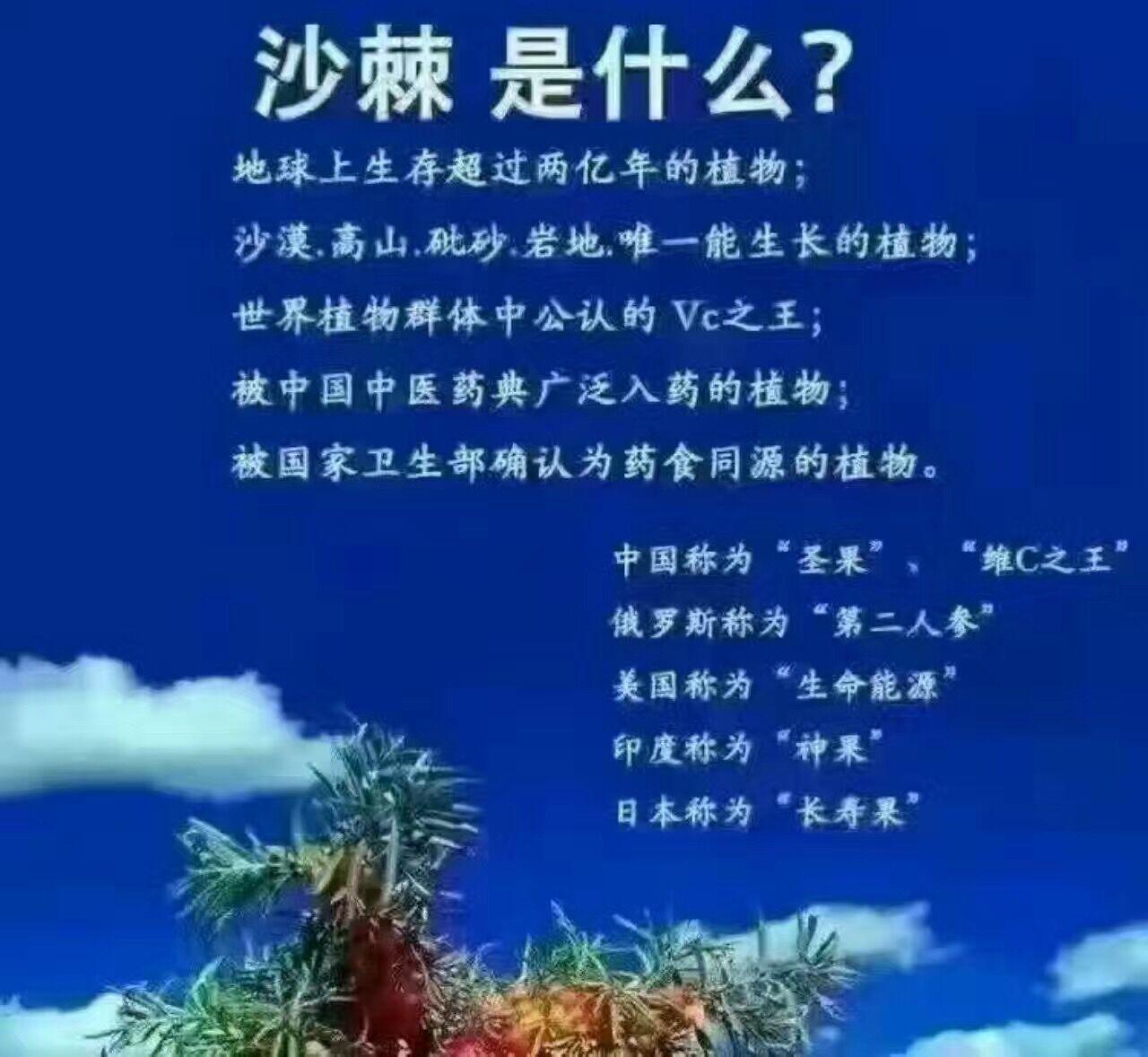 莆田市健康排毒项目/沙棘排酸项目代理