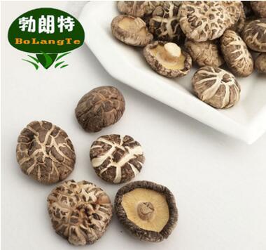 【春栽】圆形花菇 春栽香菇 椎茸批发 AA1.8-2.6-3.2-4.0cm 一件代发