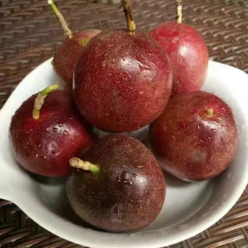 广西梧州酸甜可口的百香果批发价格多少钱一斤