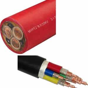 供甘肃天水交联电缆和陇南电焊机电缆行业领先