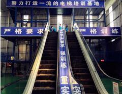电梯行业未来发展趋势下